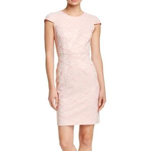 Adrianna Papell Backless Blush Lace Overlay Dress